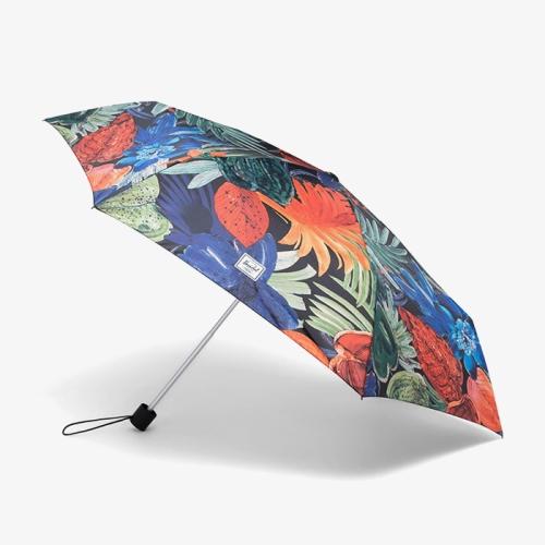 Compact Umbrella (496)